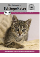 schaengelkatze-preview_2017-01.jpg